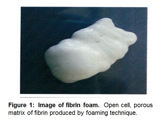 Frontiers | Characterization of an aerated fibrin sealant